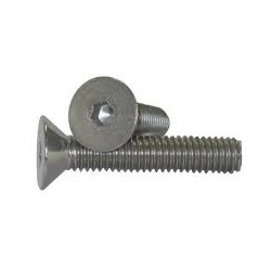 Flat Hd. Cap Screw (10 mm x 20 mm)