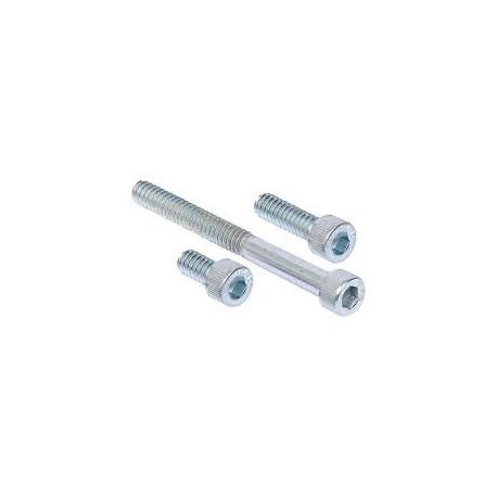 Socket Hd. Cap Screw (10 mm x 45 mm)